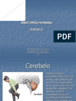 Universidad Abierta Interamericana 1212626871564230 9 (1)
