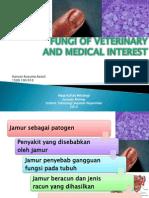 Fungi of veterinanan medical interest