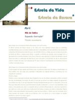 2013_04_Refexão do Mês EVEA_ Patrícia Almeida