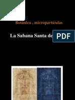SST . La  Botanica,Las Micropartículas