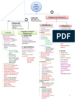 Bacteria Charts - Comprehensive