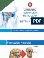 [Seminario - Neuroanatomía] - Formación Reticular y Sistema Límbico