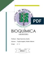 Informe 2 bioki.docx