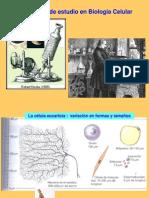 Tecnicas_citologicas