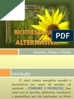 Apresentação final -  Biodiesel (2)