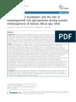 Developmental Localization Hydroxyproline Glycoproteins Somatic Embryogenesis BMCPlantBiol2011
