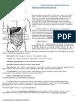 ROLUL ENZIMELOR IN ETAPELE DIGESTIEI. BOLILE METABOLISMULUI GLUCIDIC..pdf