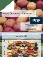seminário batata fran,rai e ray