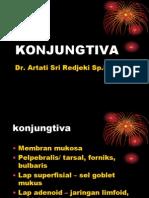 Konjungtiva - Dr Artati Des 2012