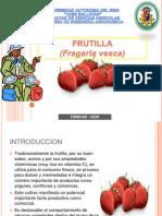 Expo Frutilla