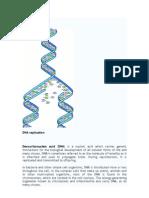 DNA Booklet