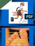 14664047 Anatomia y Biomecanica Del Complejo TobilloPie