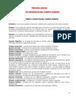 APUNTES 3 SIST CUERPO HUMANO.doc