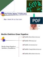 bacilosentericosupla-100509193511-phpapp02