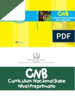 CNB Nivel Preprimario