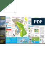 Infografía - Hidroeléctricas en territorio asháninka. Los impactos de Pakitzapango y Tambo 40