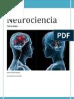 Neurociencia. Telencefalo.pdf