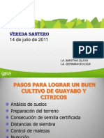 Citricos+Guayabo+2011+Santero.ppt