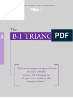Pillar 4 - The B-I Triangle