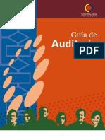 Guía de Auditoría 2011