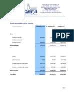 Bilant 2012 preliminar CONCEFA