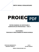 Marius Rotaru Proiect