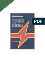 Agenda Electricieanului E.pietrareanu
