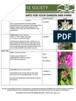 Bee Friendly Plants for Your Garden and Farm1
