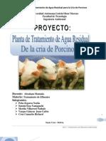 Tratamiento AR Porcina, Proyecto
