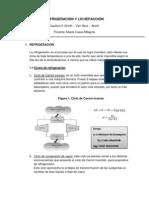 Refrigeracion y Licuefaccion Resumen