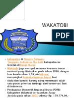 Wakatobi (Tugas Mandiri) Mochamad Zulfar Aufin
