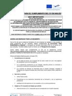 Indicaciones Cumplimentar Cv Ingles - 2012