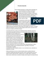 Trabalho de Biologia-biomas