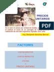 Presentacion APU
