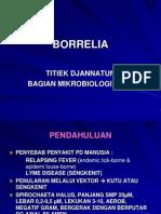 BORRELIA