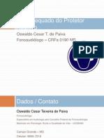 Palestra EPI Auditivo Fundacentro 2011l.ppsx