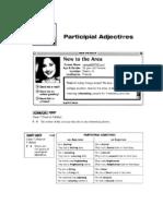 Participal Adjectives Homework