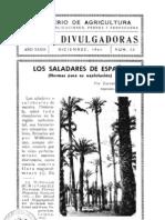 Los saladares de España (palmeras) -1941.pdf