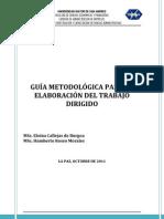 IICCA_GUIA_METODOLOGICA_PARA_ELABORACION_TRABAJO_DIRIGIDO_2012.pdf