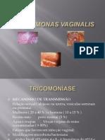 Trichomonas Vaginallis 2