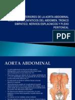 3.4 Circulacion Arterial y Venosa Intraabdominal