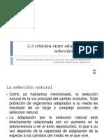 2-3adaptacinyseleccinnatural-090927213122-phpapp02