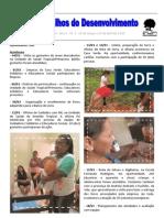 Nos Trilhos do Desenvolvimento - Ano 1 - nº 2