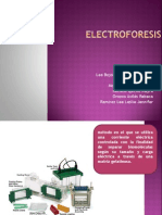 electroforesis-090920172748-phpapp01