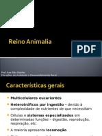 Reino Animalia-1parte