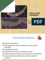 NUTRICIÓN DEL CORAZON. ARTERIAS CORONARIAS. 2011