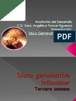 disco germinativo trilaminar .pptx