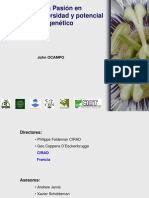 060222 Frutas de La Pasion