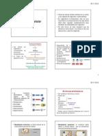 Presentación 12 Señalización celular