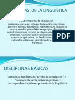 Disciplinas y Campos de La Linguistica (1)